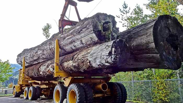 Canadian Personal Property Appraisers Group - Forestry Heavy Equipment